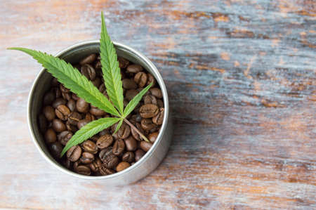 Marijuana leaf and roasted dark coffee beans