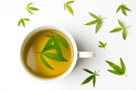 Marijuana herbal tea and green cannabis leaves 스톡 콘텐츠