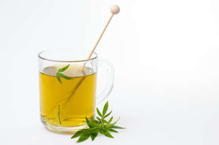 Cannabis herbal tea and green marijuana leaves Foto de archivo