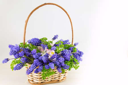 Bluebell flowers bouquet in a wicker basket
