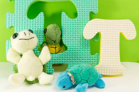 Turtle toy on top of letter T. Fun learning