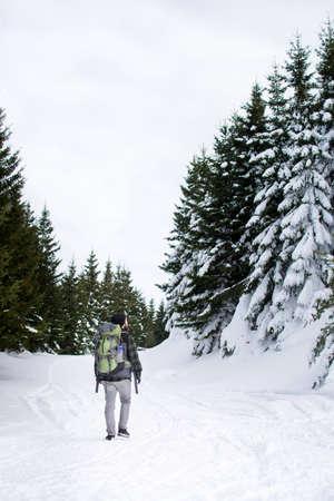 Man walking among snow covered pine trees