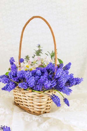 Bluebell and spring flowers bouquet in a wicker basket
