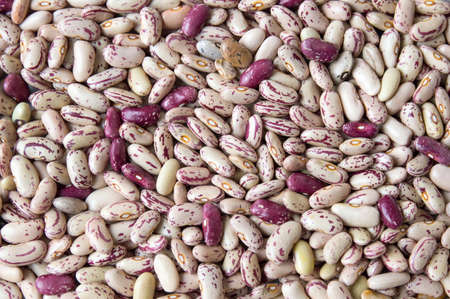 roman beans: Colorful Borlotti beans forming background pattern