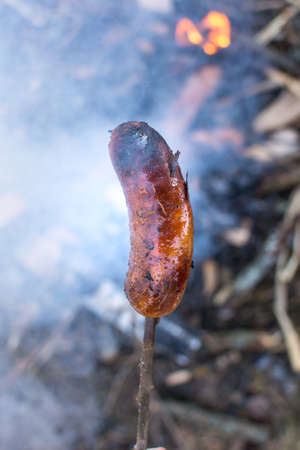Man holding a sausage above embers to roast Stock Photo