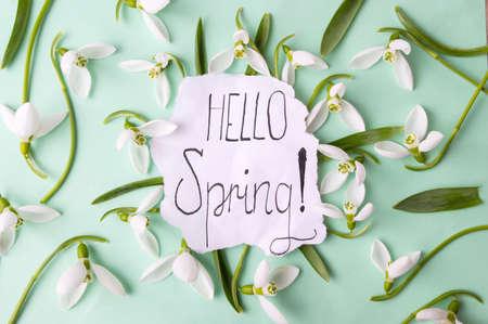 Bonjour la note de calligraphie de printemps décorée de perce-neige Banque d'images