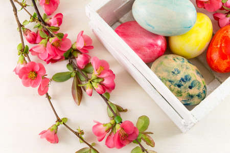 Painted Easter eggs and Japanese rose flowers in bloom