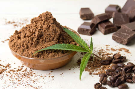 Cacao powder in a bowl with chocolate pieces and coffee beans Standard-Bild