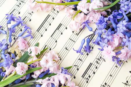 音楽の音符のシートでカラフルなヒヤシンスの花