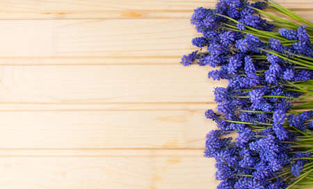 Hyacinth flowers on a wooden board with copyspace Stock Photo
