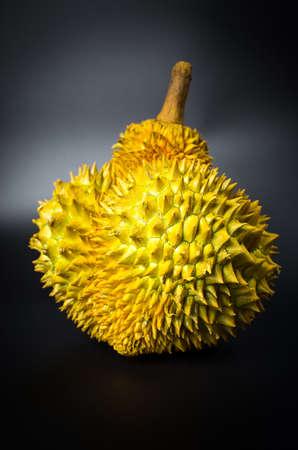 Fresh durian tropical fruit on black background