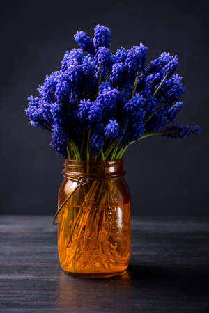 Hyacinth flowers bouquet in an orange vase