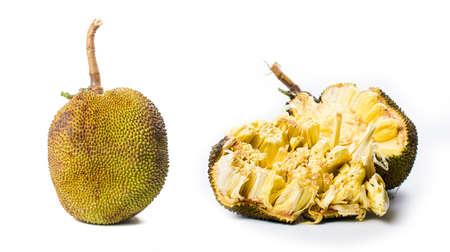 Gehele jackfruit geïsoleerd op witte achtergrond. Tropisch fruit