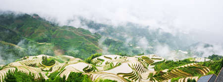 terraced field: Panorama of foggy terraced rice field in Longji, Guilin area, China