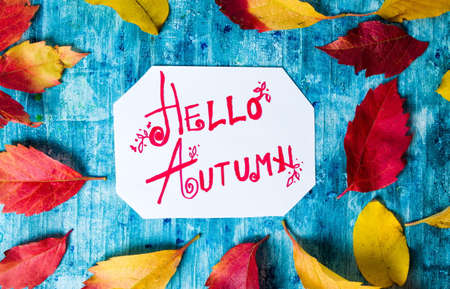 Hello Autumn calligraphy note with fallen leaves on blue board Stock Photo