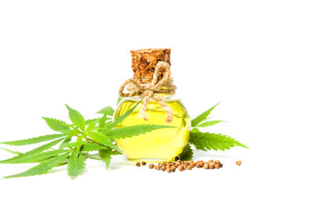 Cannabis oil in a bottle isolated on white background Фото со стока