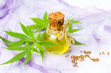 Cannabis oil in a bottle and seeds on purple fabric