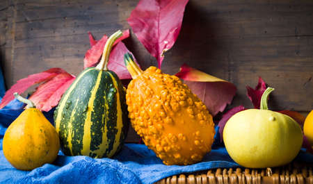 Colorful pumpkins and autumn leafs against rustic background