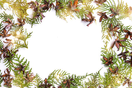 Tiny pine cones and branches with copy space and white background