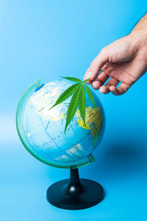 Hand holding cannabis leaf in front of a globe Banco de Imagens - 93861374