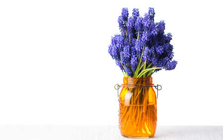 Hyacinth flower bouquet in a vase isolated