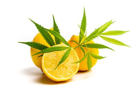Marijuana leaf and lemon isolated on white