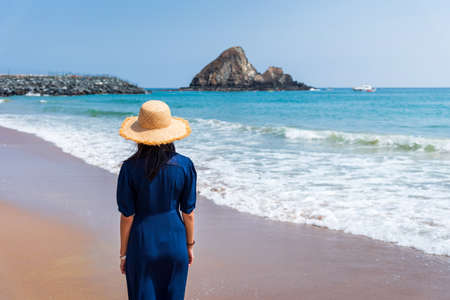 Woman enjoying day at the seaside on summer vacation rear view