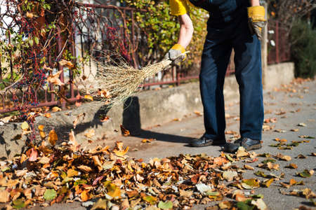 Man brooming the street to collect fallen autumn leaves