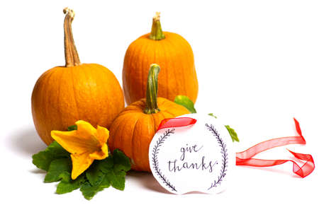 Small pumpkins on white background isolated with Thanksgiving note