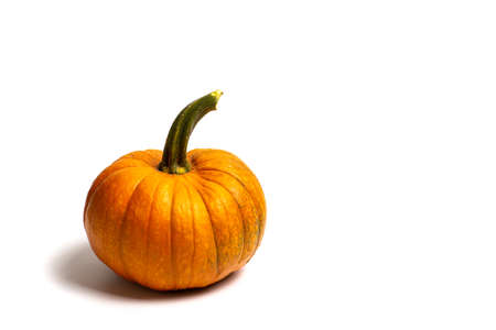 Small pumpkins on white background isolated, Thanksgiving abstract