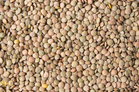 Bunch of raw lentil forming a background pattern
