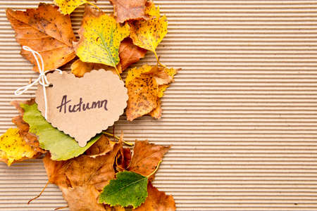 Autumn leaves on corrugated cardboard Background with heart shape tag Stockfoto