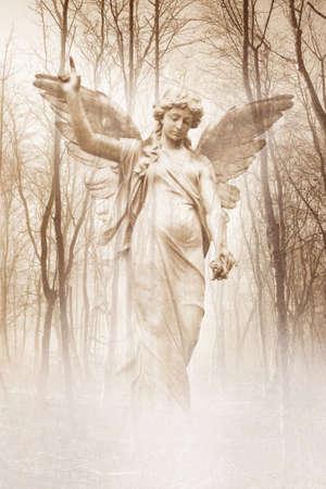 숲 천사 스톡 콘텐츠