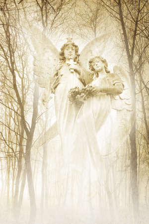 seraphim: Twin Forest Angels