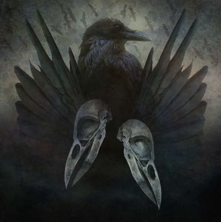 nightmarish: Crow Spirit