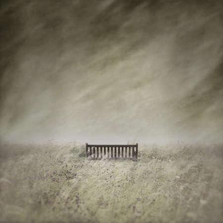 empty: Empty Bench
