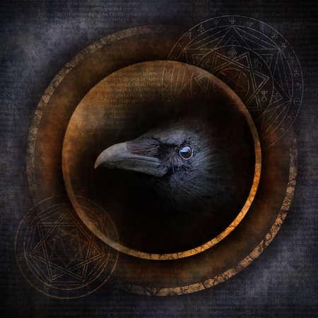 Demon Crow