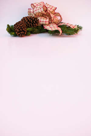 Two pine cones and a handmade bow of red and green with a gold trim on a spruce tree branch