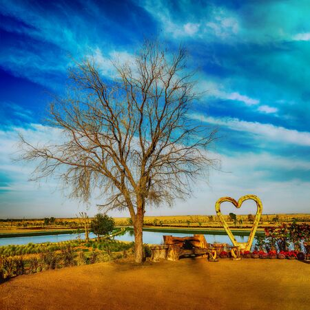 A Love Tree and Wooden Shaped Heart at Dubai Love Lake, the newest attraction at Al Qudra Lake in Dubai Stock Photo