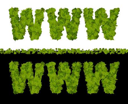 worldwideweb: WWW  leaves pattern- go green concept Stock Photo