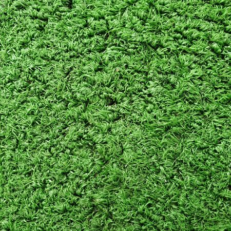 Cricket Pitch Texture Close up. Green Grass. Indoor Cricket Turf grass texture used in indoor cricket turf Zdjęcie Seryjne