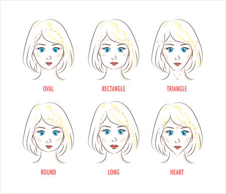 proportion: Woman face proportion infographic. Different face shapes. Cute style. Forms of a female face: rectangle, triangle, round, oval, heart, long. Illustration for make up artists, hairdressers