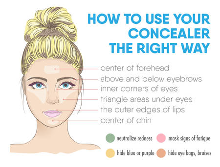 zones: How to use your concealer the right way infographic. Vector illustration with makeup and beauty tips. Face zones for concealer or highlighter correction. How to choose the color of concealer. Illustration