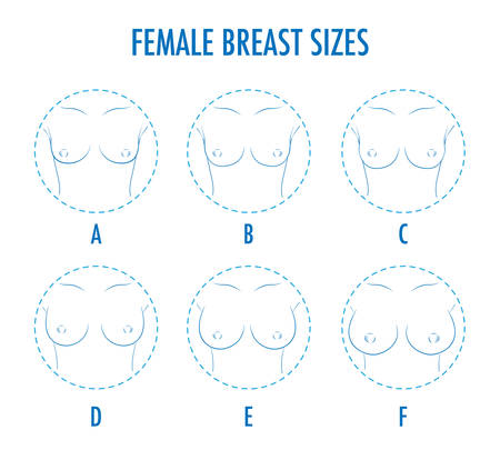 Set of contour round icons of different female breast size, body front view. Various boobs sizes, from small to large. Sizes of busts, from A to F. Vector isolated, monochrome.