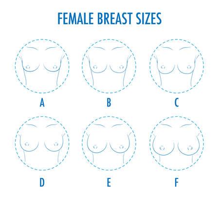 Zestaw konturów okrągłe ikony różnej wielkości kobiet piersi, widok z przodu ciała. Różne rozmiary piersi, od małych do dużych. Rozmiary popiersia, od A do F. Wektor odizolowany, monochromatyczny. Ilustracje wektorowe