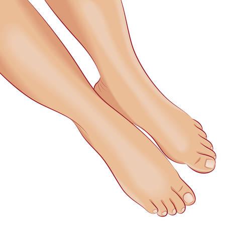 중립 베이지 색 발 치료와 벌거 벗은 여성 피트. 전면 뷰를 닫습니다. 발 관리 개념입니다. 여성의 개념, 스파, 화장품 디자인 요소입니다. 벡터 일러스