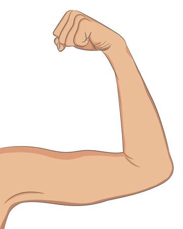 Hembra bien entonado bíceps. Brazo doblado que muestra el progreso después de la aptitud. Ilustración vectorial de color para la belleza, la cosmetología, el deporte o la infografía de medicina. Concepto del deporte de la mujer.