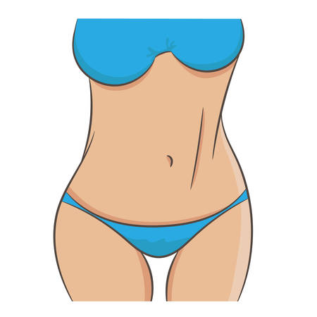 Perfect female body, slim and well fit. Woman standing in underwear. Closeup picture of torso, arms, chest, waist and thighs, front view. Contour vector illustration weight loss and fitness concept.