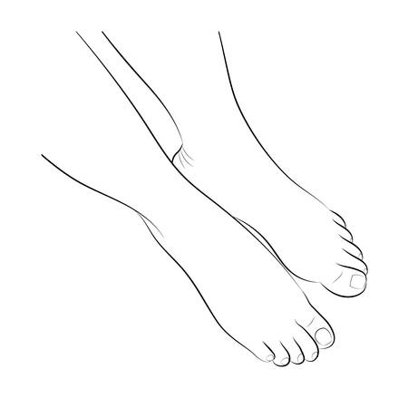 foot care: Bare female feet with neutral pedicure. Front view, close up. Foot care concept. Black and white vector illustration, isolated.