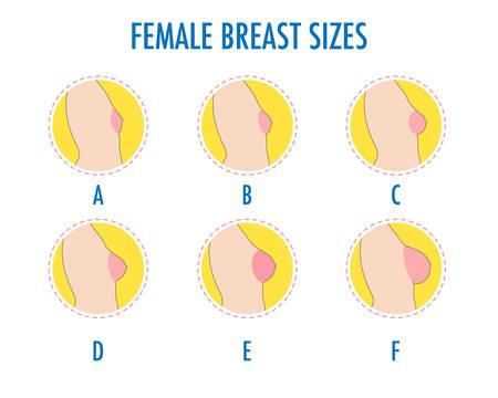 Set van ronde lijn iconen van verschillende vrouwelijke borstomvang, lichaam zijaanzicht. Verschillende borstenmaten, van klein tot groot. Maten van bustes, van A tot F. Vector geïsoleerd op wit.